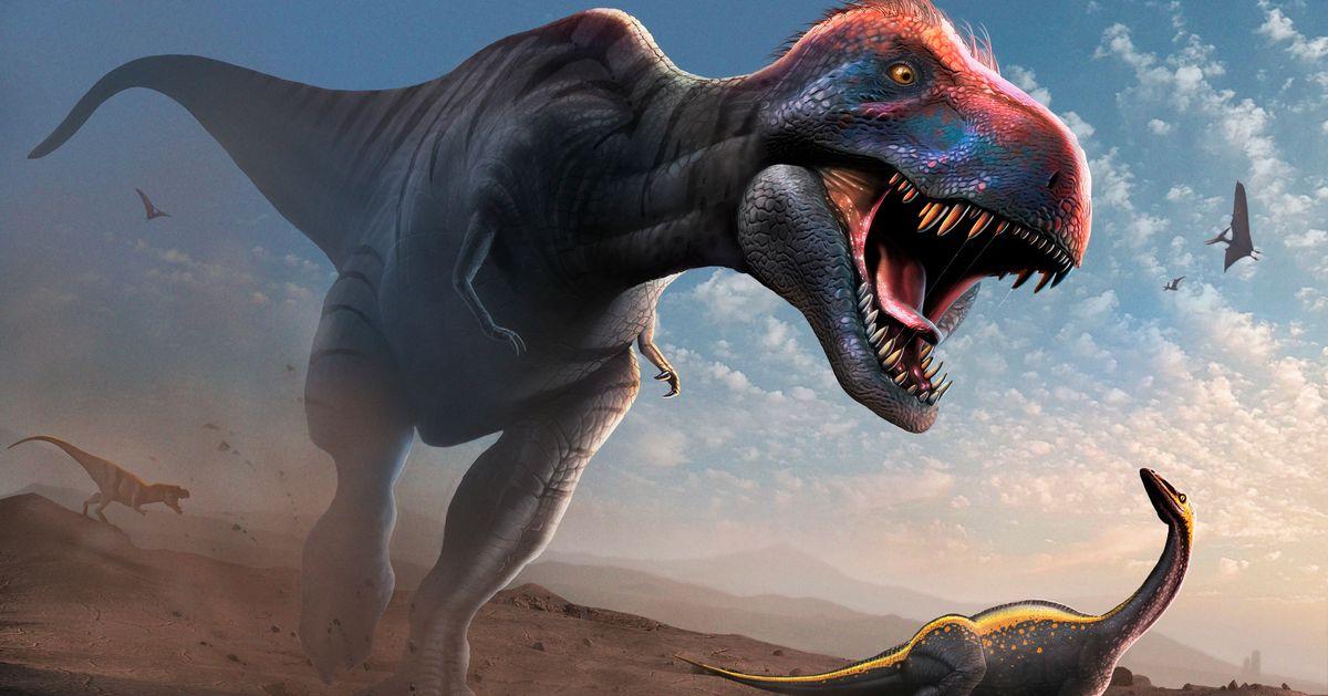 Même adolescents, les T-Rex dominaient les espèces de dinosaures plus petites