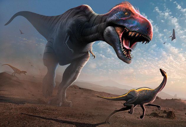 Les tyrannosaures adolescents, même encore