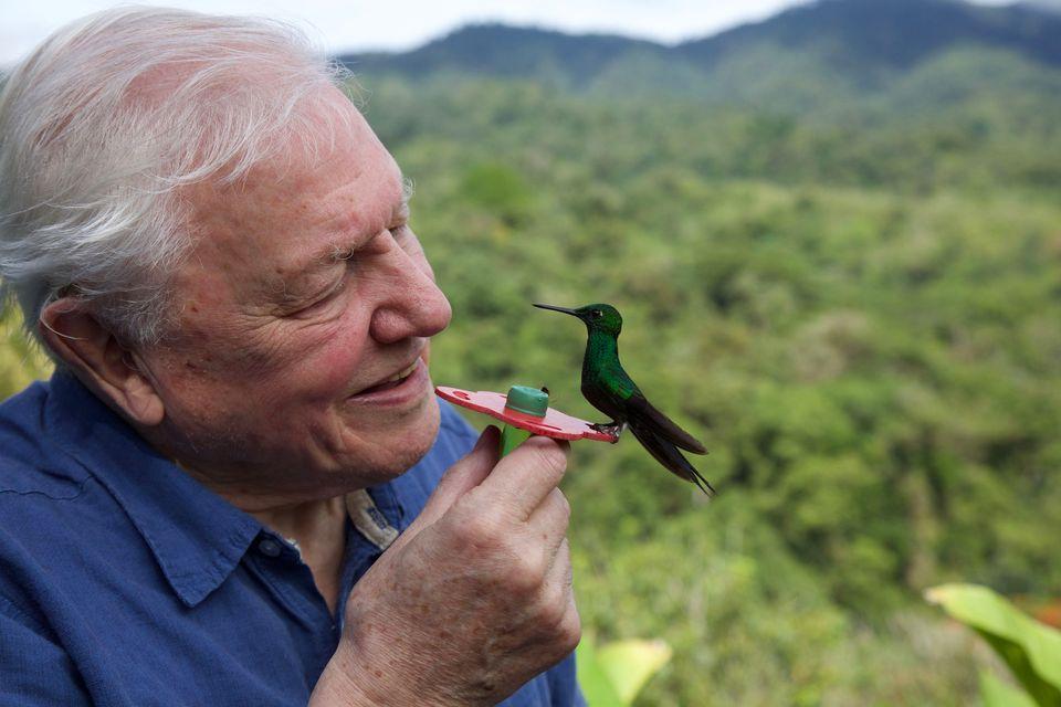 David Attenborough in Costa Rica with a small