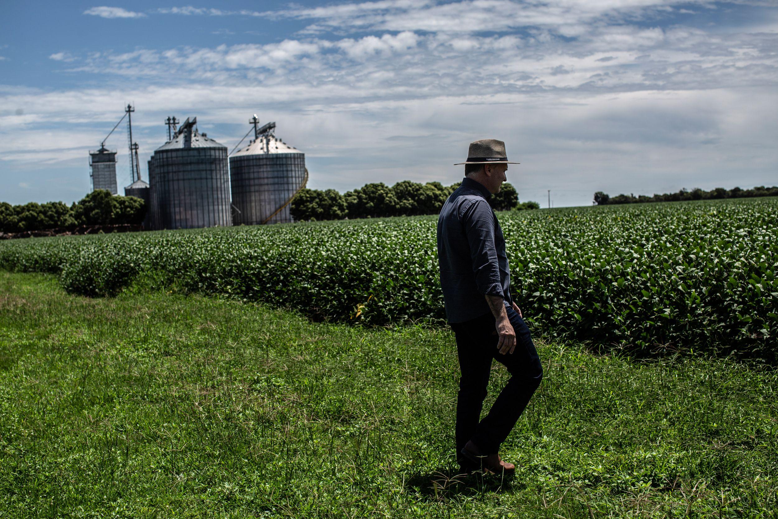 Juliani inspects his soybean farm in the Cerrado.