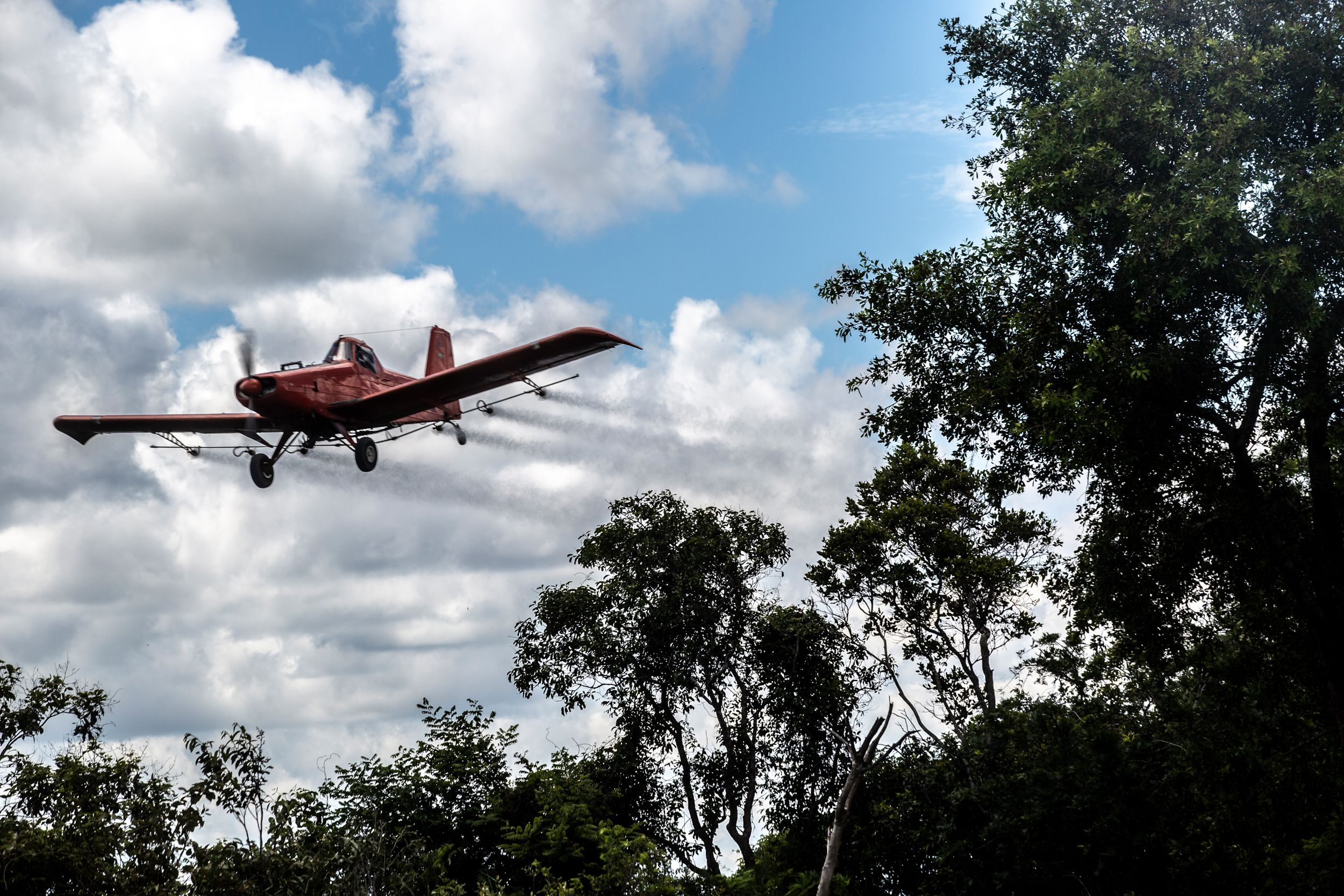 An airplane sprays over soy fields behind native trees in the Cerrado.
