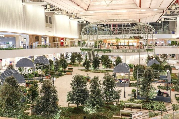 더현대 서울 5층의 사운즈 포레스트. 1천평 규모로 실내 정원을 마련했다.