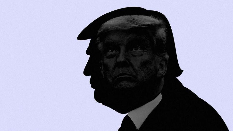 El tonto útil: por qué queda Donald Trump para