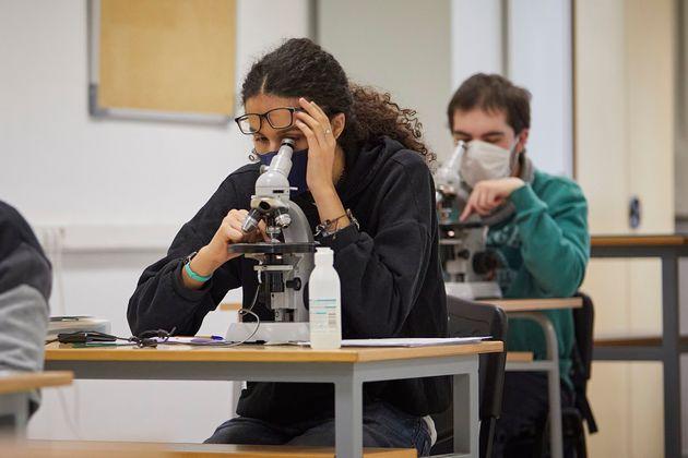 Alumnos en la Facultad de Ciencias de la Universidad de