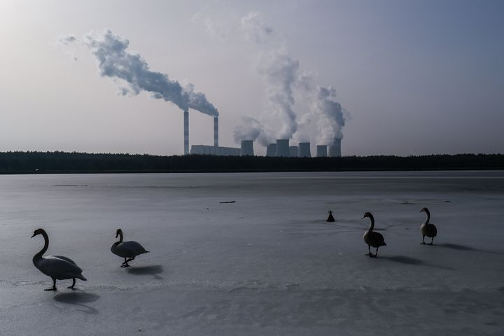 Swans walk on a frozen lake as steam and smoke rises from the Belchatow Power Station in Rogowiec, Poland. The plant, with an output of 5,472 megawatts, is the world's largest lignite coal-fired power station, and emits approximately 30 million metric tons of CO2 per year.