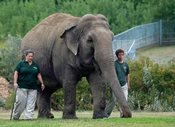 Lucy the elephant with her handlers, circa 2009. A Supreme Court dismissed a case about her treatment in 2019.