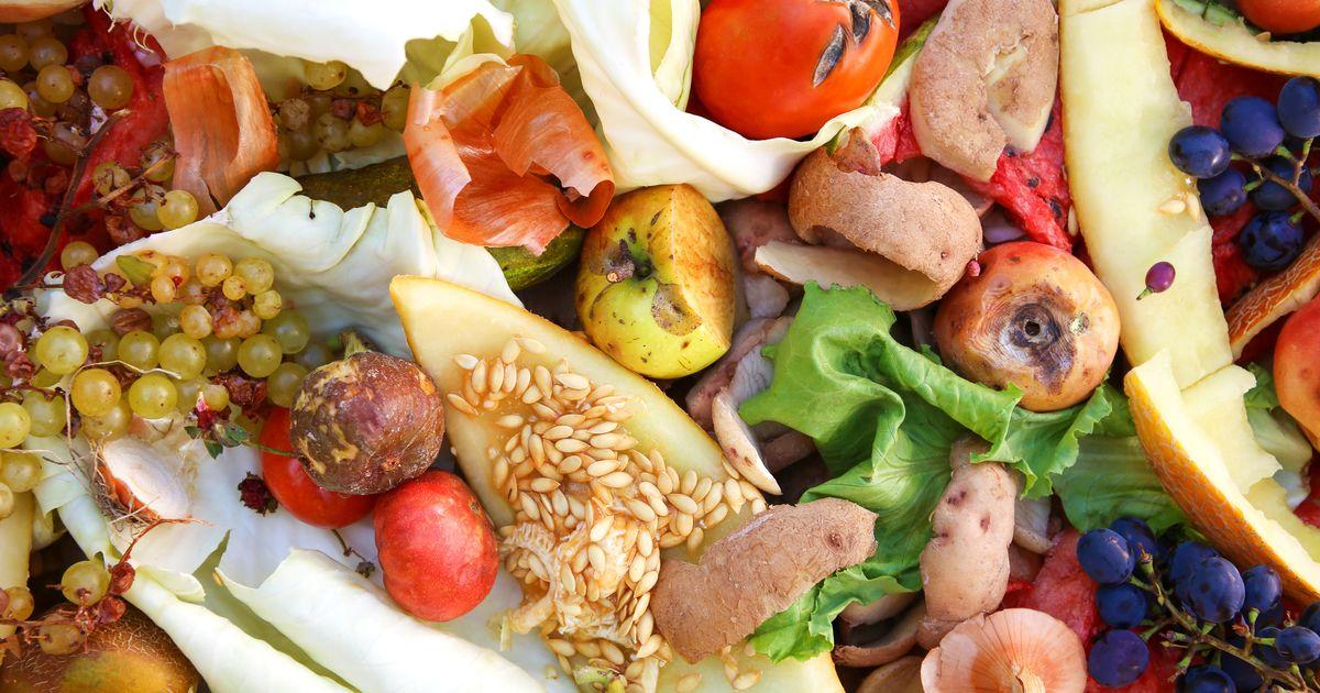 Près de 20% de la nourriture est gaspillée dans le monde