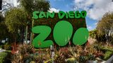 SAN DIEGO, CALIFORNIA - APRIL 11: General view outside San Diego Zoo as entertainment venues remain closed due to coronavirus on April 11, 2020 in San Diego, California. The entertainment industry has been hit hard by the restrictions in response to the outbreak of COVID-19. (Photo by Daniel Knighton/Getty Images)