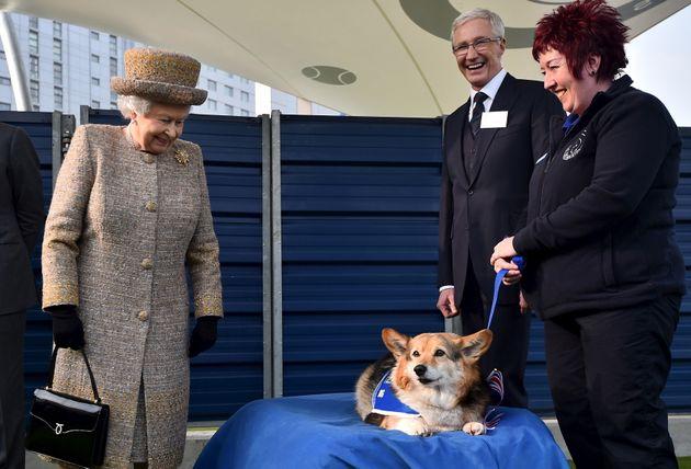 La reine Elizabeth II lors de la visite d'un refuge pour animaux à Londres en