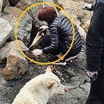 화재 피해 발생한 배우 이용녀 유기동물보호소에서 포착된 의외의