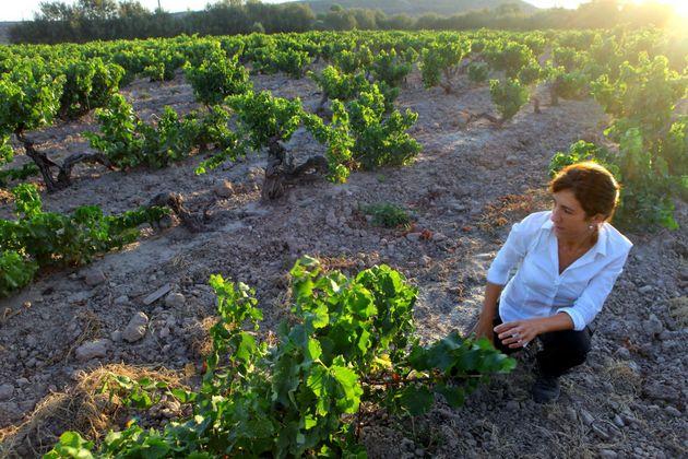 Una viticultora en un viñedo de La