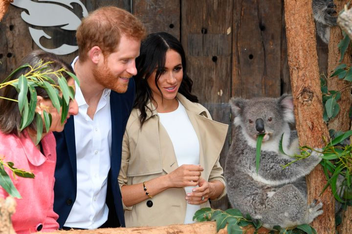 Prince Harry and Meghan Markle at the Taronga Zoo in Sydney, Australia during their royal tour in 2018.