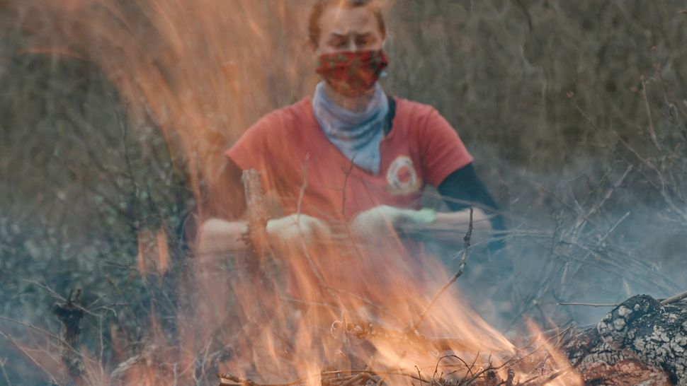 Stephanie Beard, the communication specialist for the conservation nonprofit Pepperwood, throws more dried brush on a flaming