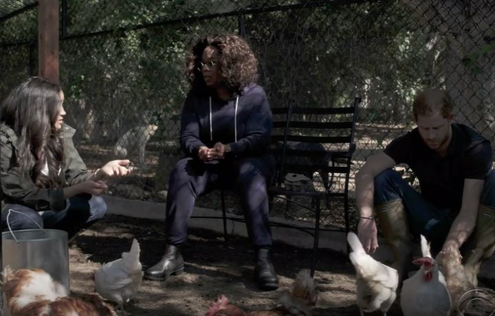 Meghan and Harry chilling with Oprah and their flock.