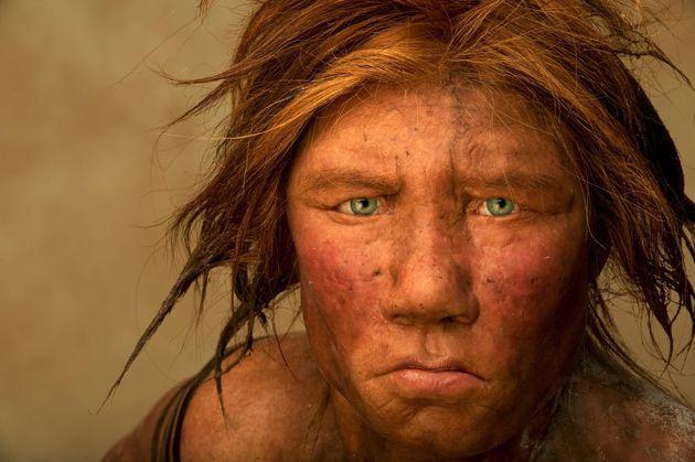Une femme de Neandertal recréée par des artistes Hollandais à partir de fossiles....