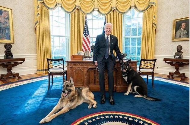Εκτός Λευκού Οίκου τα λυκόσκυλα του Μπάιντεν, δάγκωσαν άνδρα της