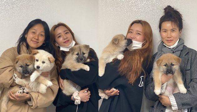 이효리와 에이핑크 윤보미, 배우 공민정이 강아지들을