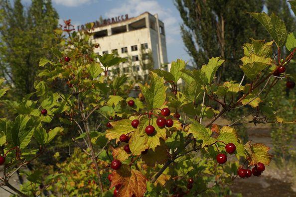 Τσέρνομπιλ, 19 Αυγούστου