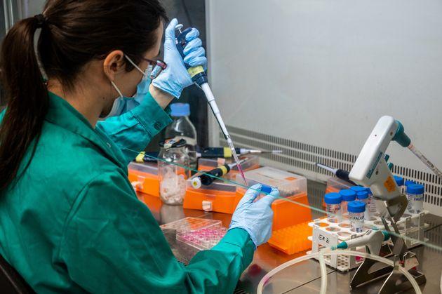 Una científica del Centro de Investigaciones Biológicas Margarita