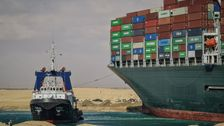Thousands Of Animals Packed On Ships In Suez Canal Backup: Reports