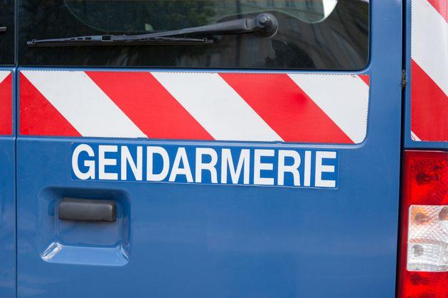Les gendarmes ont appréhendé l'individu (image