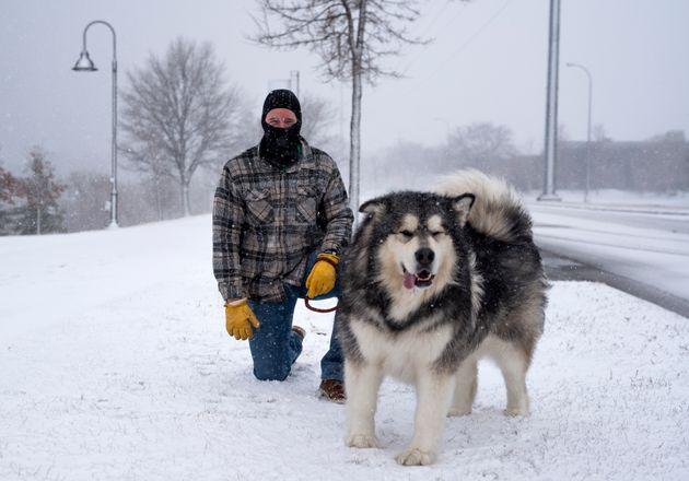 吹雪の吹くアメリカミネソタ州にて。名前は「パックス」(Photo by Stephen Maturen/Getty