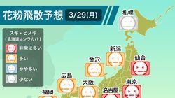 【3月29日】花粉飛散予想、気温上昇で東京など広範囲で「非常に多い」。ヒノキ花粉の増加も