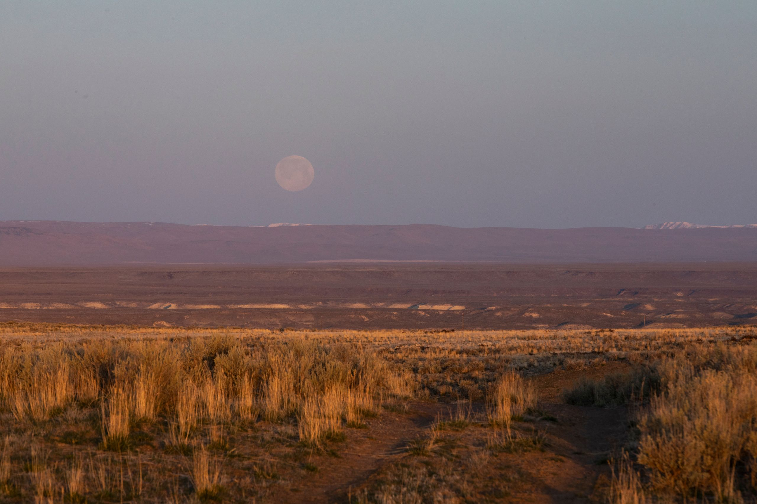 Sunrise over the sagebrush as the moon sets outside Rome, Oregon, on Sunday, March 28.