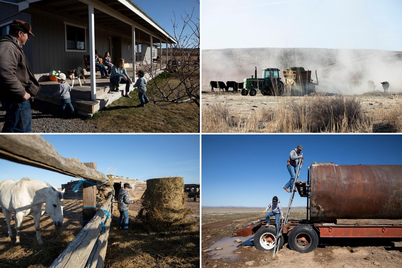Top left: Fred Eiguren, left, and ToniJo Eiguren, sitting right, visit as the family gets ready for the day at their ranch near Arock, Oregon. Top right: Elias Eiguren feeds cows and calves during morning chores at the family's ranch. Bottom left: Thales Eiguren, 11, feeds horses during morning chores at the family's ranch. Bottom right: Elias Eiguren checks water lines and a tank with his son Thales. Getting water to stock and keeping them watered is one of the most challenging parts of the family's cattle operation as the landscape is naturally arid.