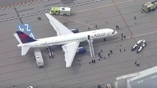 See The Damage A Flock Of Birds Caused To A Utah Jazz Flight