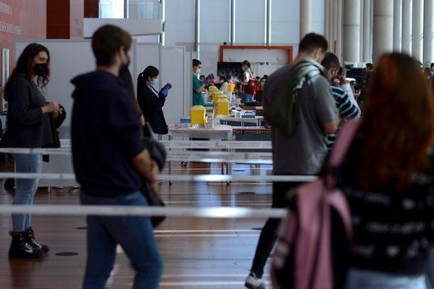 Estudiantes de Ciencias de la Salud y docentes hacían cola el miércoles en Valladolid durante la reanudación...