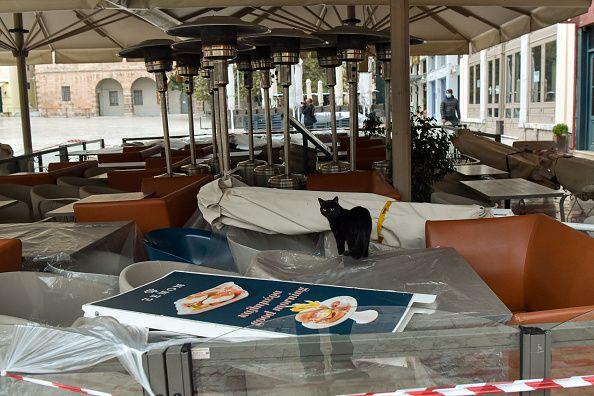11 Νοεμβρίου 2020, Ναύπλιο: Μία γάτα κάνει τον περίπατό της πάνω στα τραπέζια ενος από τα εστιατόρια...