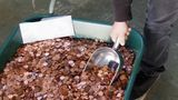 Georgia Man Who Recieved Over 90,000 Pennies As His Final Paycheck Finally Cashes Out