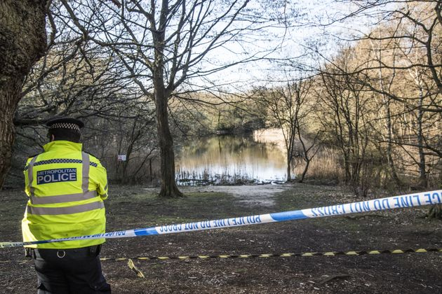 <strong>Wake Valley pond in Epping Forest where the body of 19-year-old Richard Okorogheye was found.</strong>