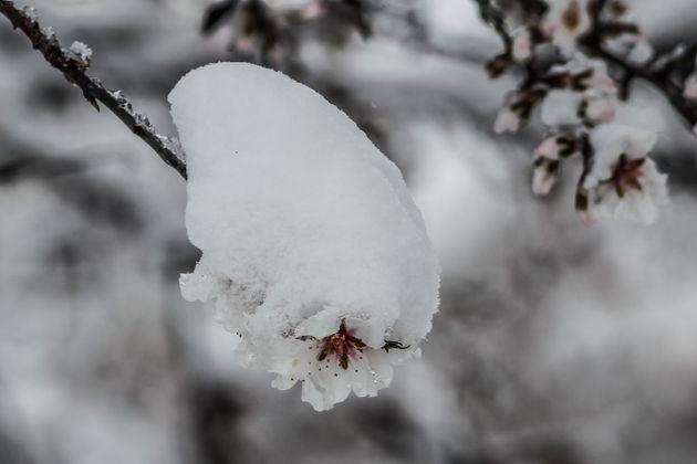 Τρελάθηκε ο καιρός: «Ανοιξιάτικο» χιόνι στη Βόρεια