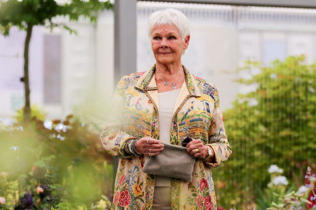 Dame Judi Dench at the Chelsea Flower Show in