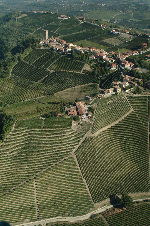 Modello Gaja: vini da oscar dalle Langhe all'Etna, fra innovazione, artigianato e