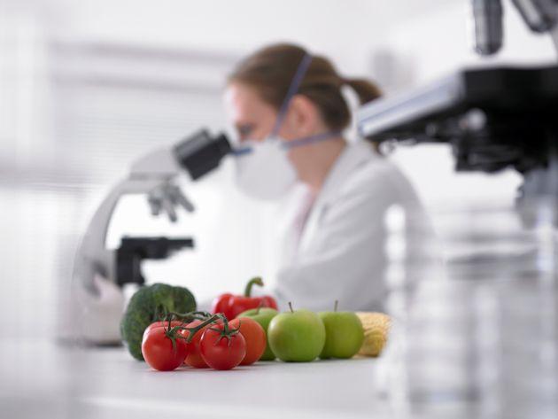 Nuovi OGM e vecchi