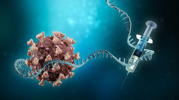 Perché Pfizer, Moderna e i vaccini mRNA hanno una marcia in