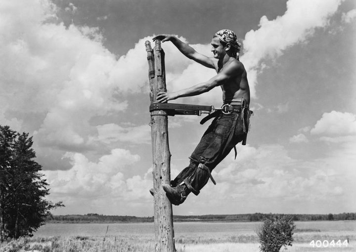 Civilian Conservation Corps worker Carl Simon installs insulators on top of a telephone pole about 1940 in Superior National