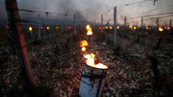 Une vingtaine de personnes intoxiquées dans le Tarn par des feux contre le