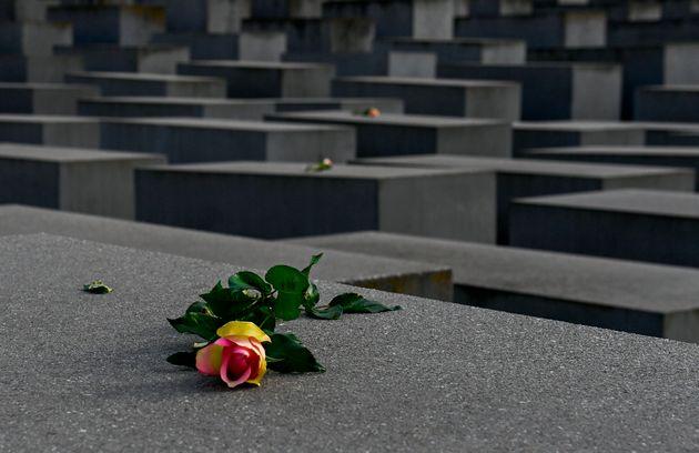 Una rosa en medio del monumento del Memorial del Holocausto en