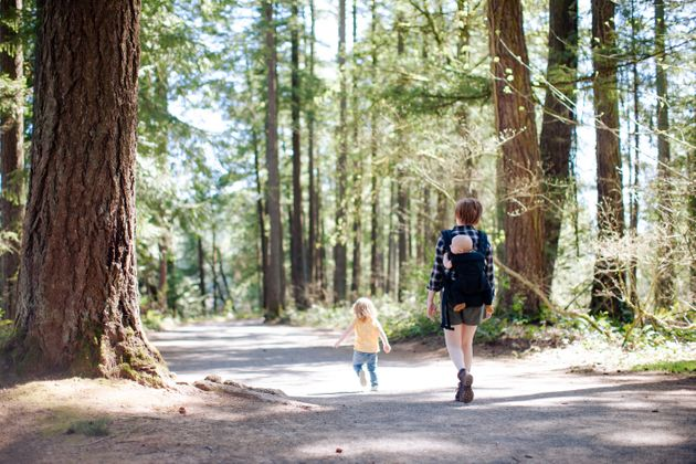 A mother with two small children goes hiking in Washington state Pacific Northwest forest on a sunny