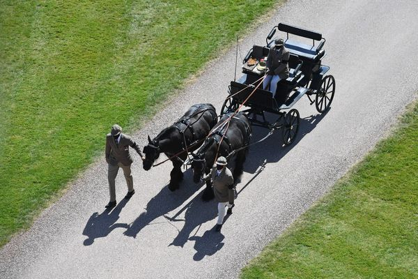 Ponies pull the Duke of Edinburgh's driving carriage at Windsor Castle.