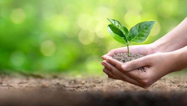 La Giornata della Terra, la sostenibilità sociale e un'utile rilettura di