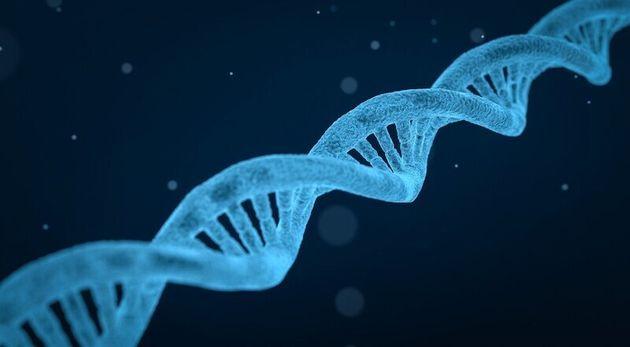 공기 속에서 동물 DNA를 채집해 분석하는 개념증명 실험이