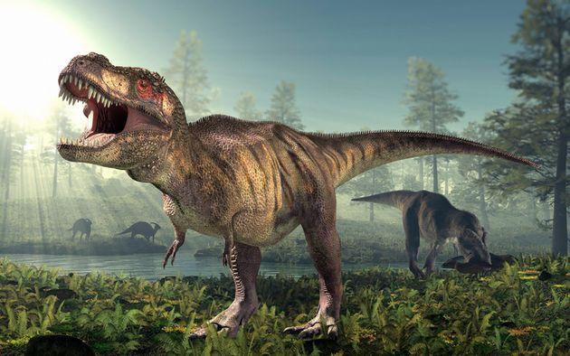 Le tyrannosaurus rex possèdait une queue flexible , essentielle pour ses
