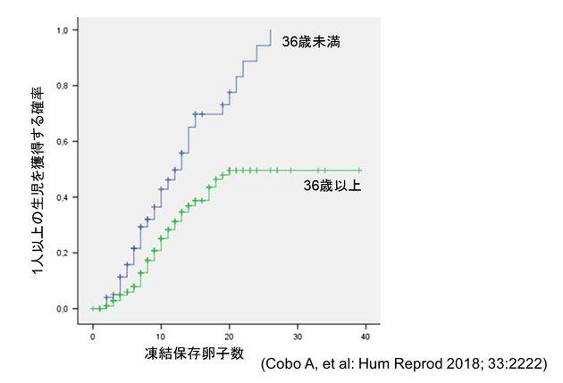 子どもを出産する確率と凍結保存した卵子数の関係を表すグラフ。女性の年齢が36歳未満と36歳以上の場合で差がみられる