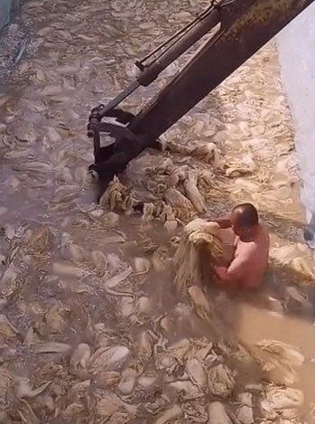옷을 입지 않은 중국 남성이 흙탕물에서 배추를 절이고
