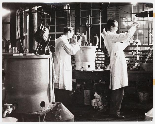 Preparazione della penicillina in